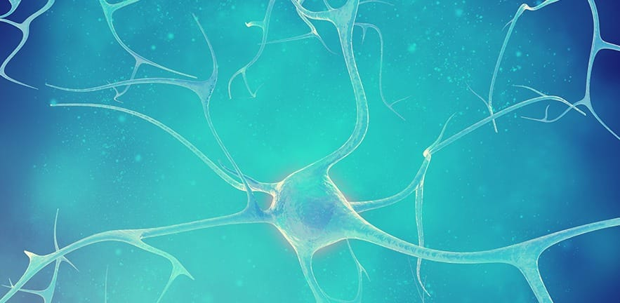 Neurons in the beautiful background. 3d illustration of a high