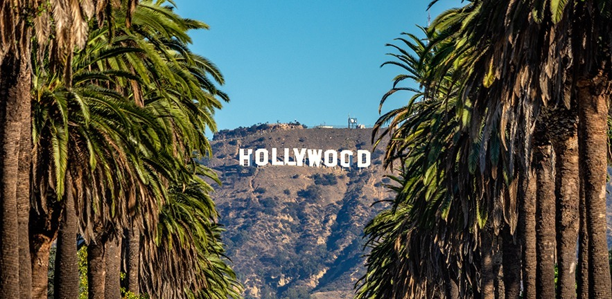 View of the Hollywood sign between palm trees.