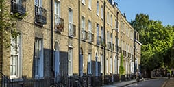 A sunny residential street in Cambridge.