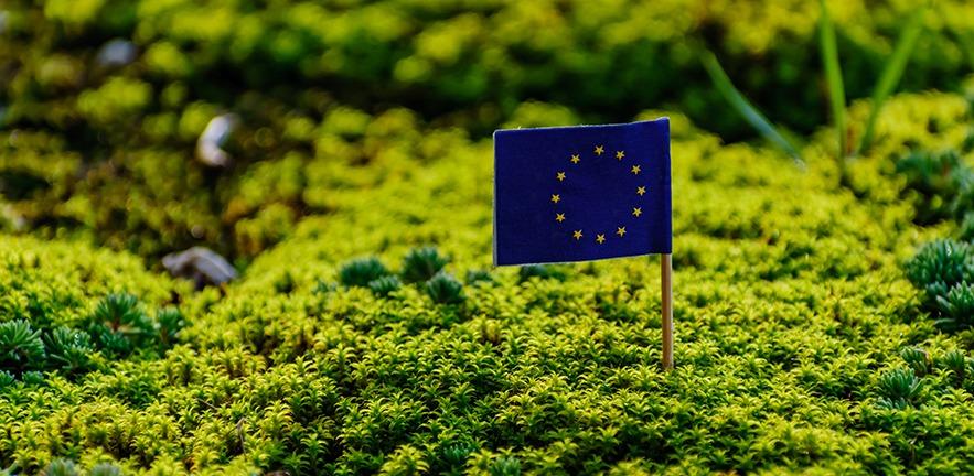 European union flag in vibrant green environment.