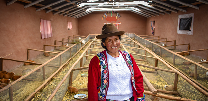 A proud Quechua Andina lady at her guinea pig farm in the Sacred Valley of the Incas in Cusco, Peru.